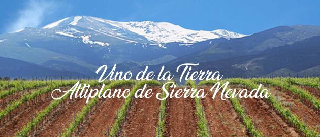 Altiplano de Sierra Nevada